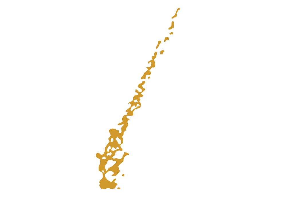 Bejing hair culture home elements cubus suave hair
